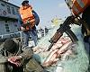На Новосибирском водохранилище задержали с поличным большую бригаду браконьеров