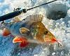 Ловля окуня на балансир по первому льду