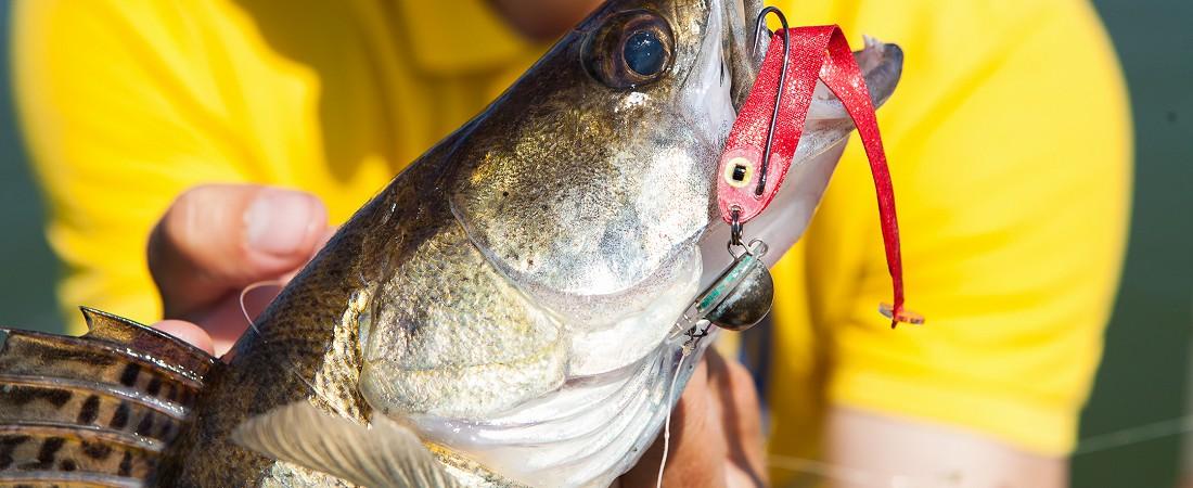 Новая эра приманок - Flat baits!
