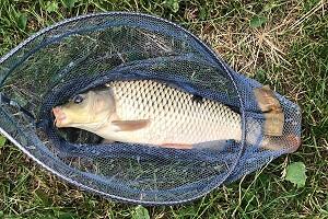 Календарь рыболова на июль 2019