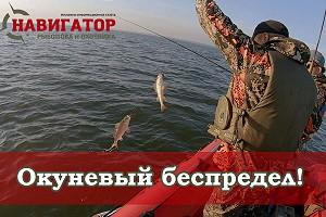 Оторвались по окуню на ОВХ! Рыбалка с Навигатором