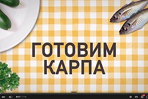 Золотистый Карп (рецепт)