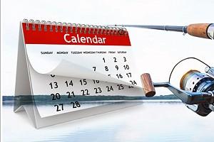Календарь соревнований ФРС НСО на 2020