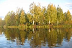 В золотую осень