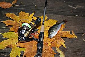 Календарь рыболова на октябрь 2021 года